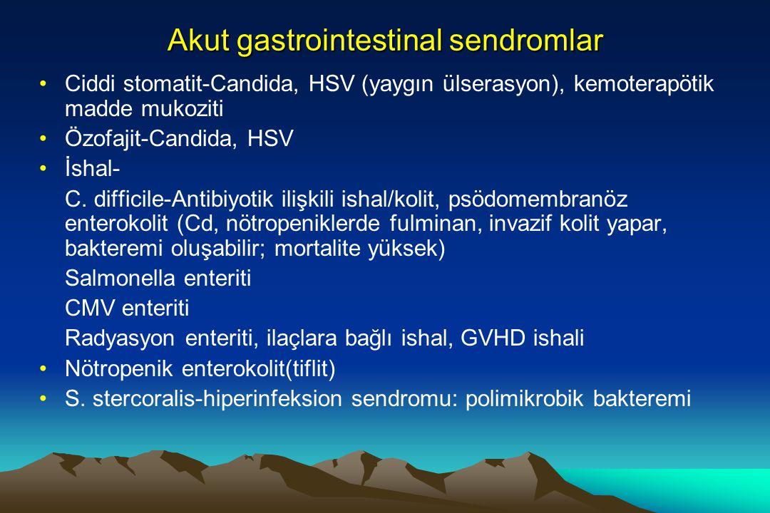 Akut gastrointestinal sendromlar