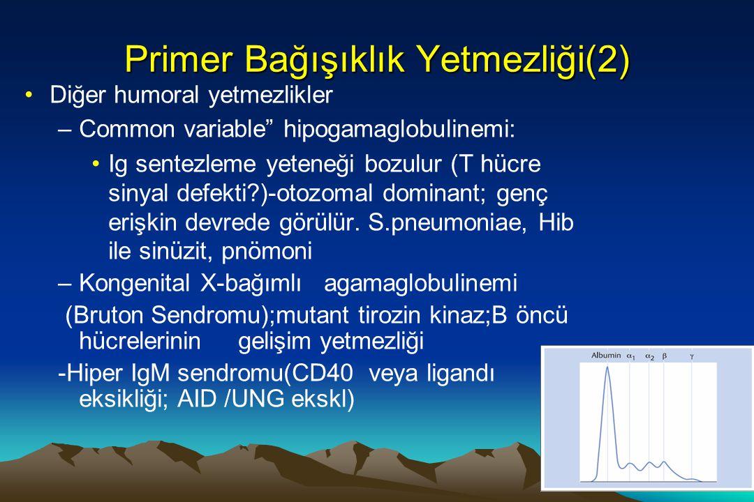 Primer Bağışıklık Yetmezliği(2)