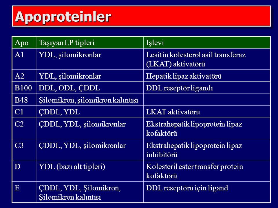 Apoproteinler Apo Taşıyan LP tipleri İşlevi A1 YDL, şilomikronlar