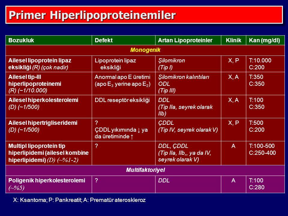 Primer Hiperlipoproteinemiler