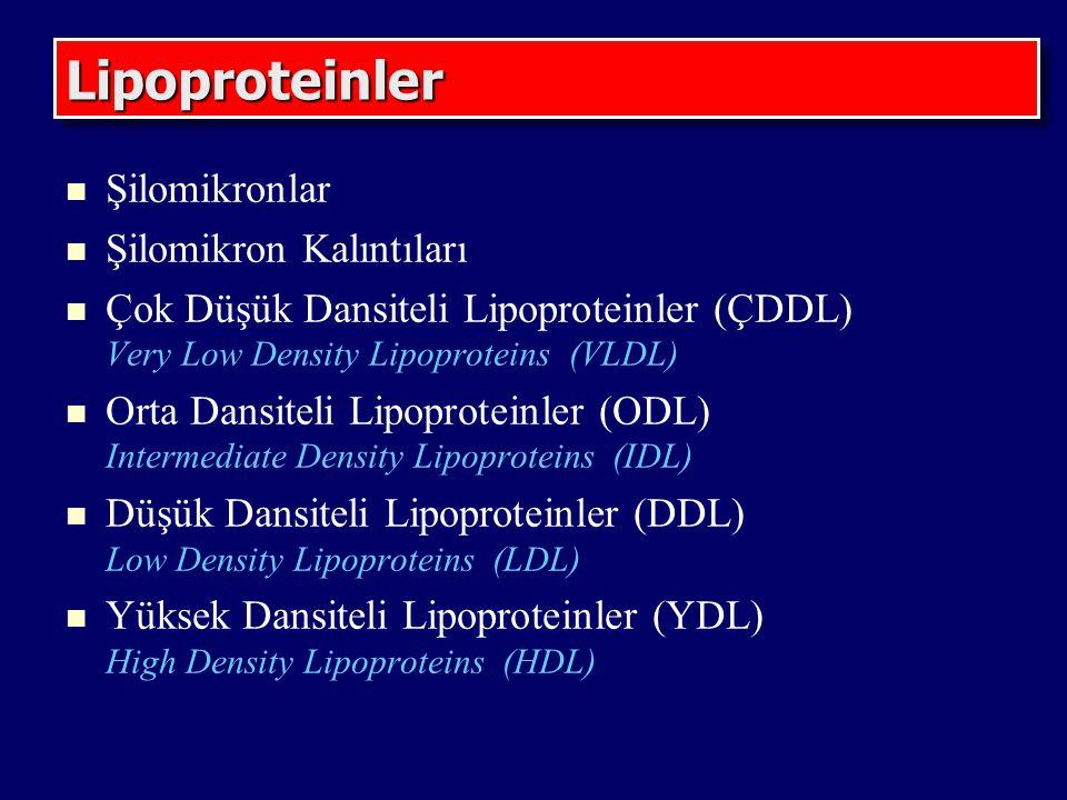 Lipoproteinler Şilomikronlar Şilomikron Kalıntıları