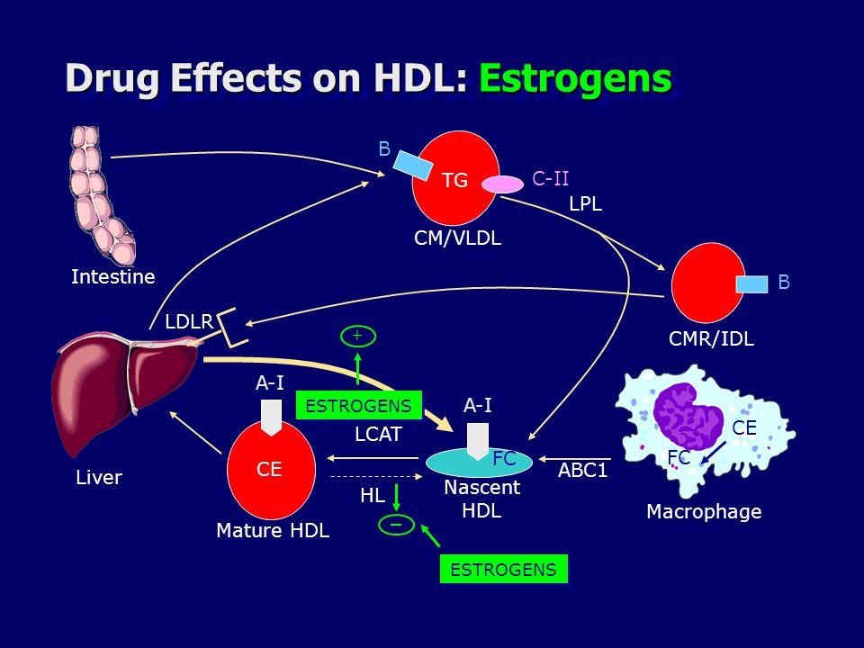 Drug Effects on HDL: Estrogens