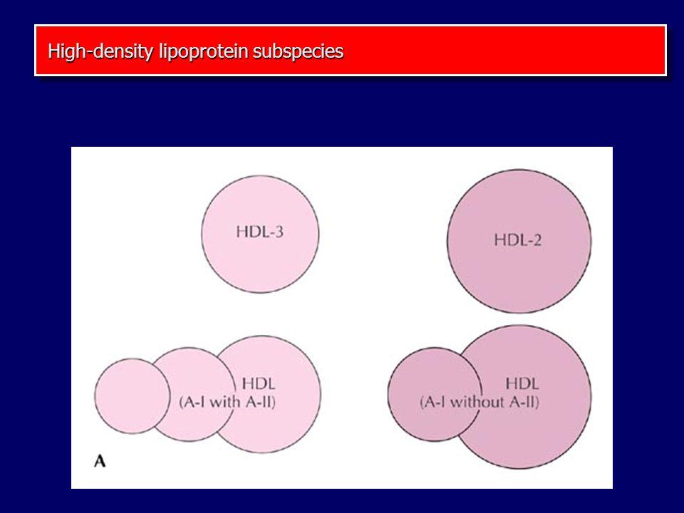 High-density lipoprotein subspecies