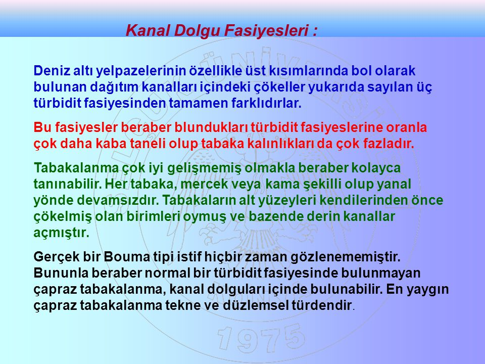 Kanal Dolgu Fasiyesleri :