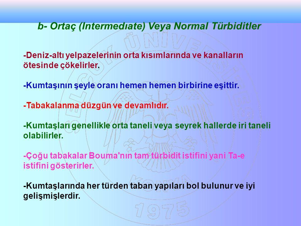b- Ortaç (Intermedıate) Veya Normal Türbiditler