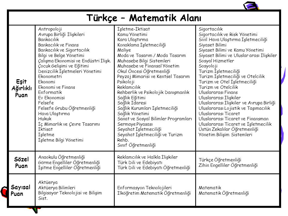 Türkçe – Matematik Alanı