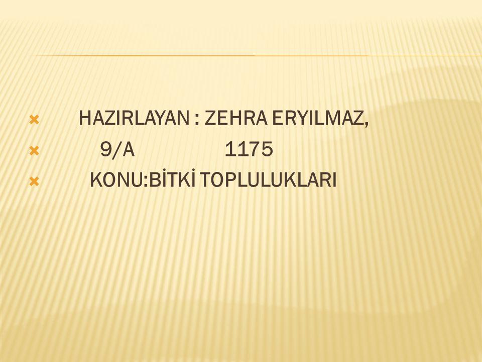 HAZIRLAYAN : ZEHRA ERYILMAZ,
