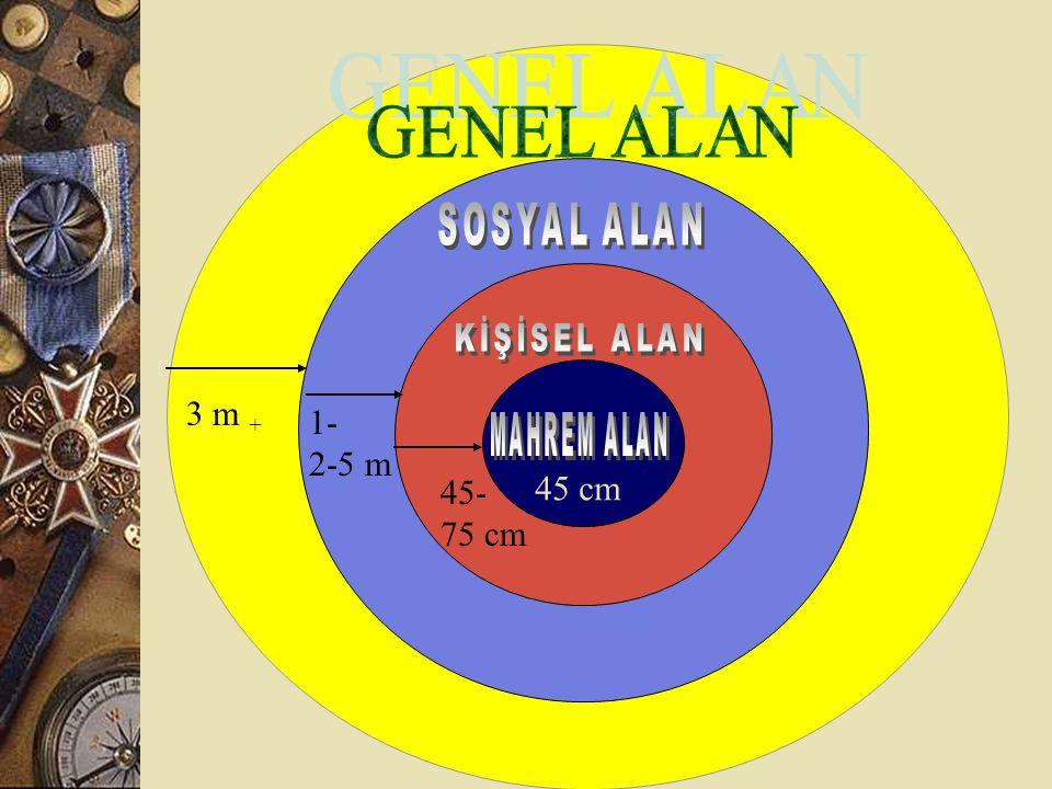 3 m + 1- 2-5 m 45 cm 45- 75 cm GENEL ALAN SOSYAL ALAN KİŞİSEL ALAN