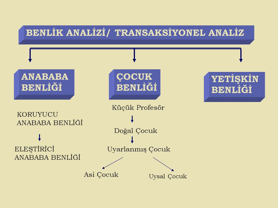 BENLİK ANALİZİ/ TRANSAKSİYONEL ANALİZ