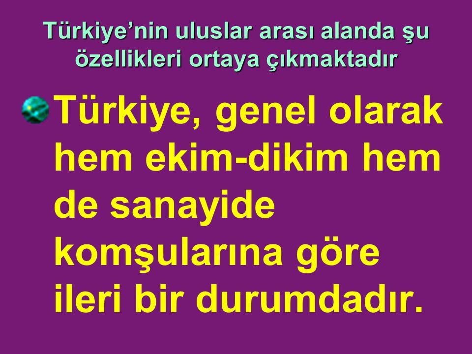 Türkiye'nin uluslar arası alanda şu özellikleri ortaya çıkmaktadır