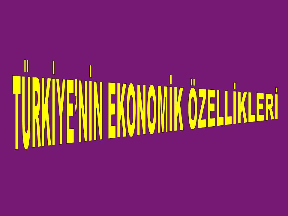 TÜRKİYE'NİN EKONOMİK ÖZELLİKLERİ