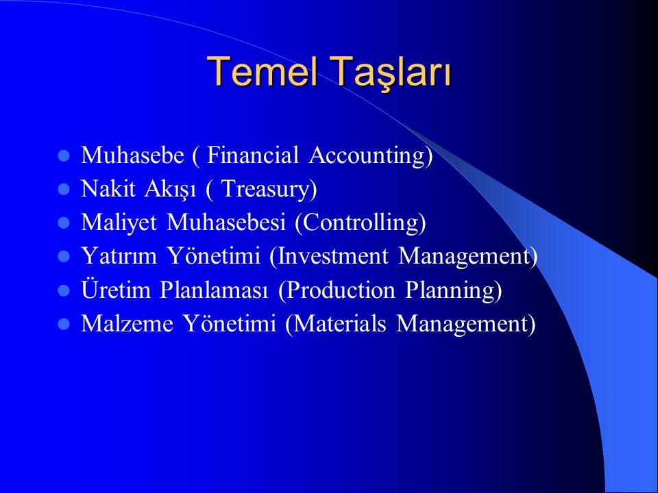 Temel Taşları Muhasebe ( Financial Accounting) Nakit Akışı ( Treasury)
