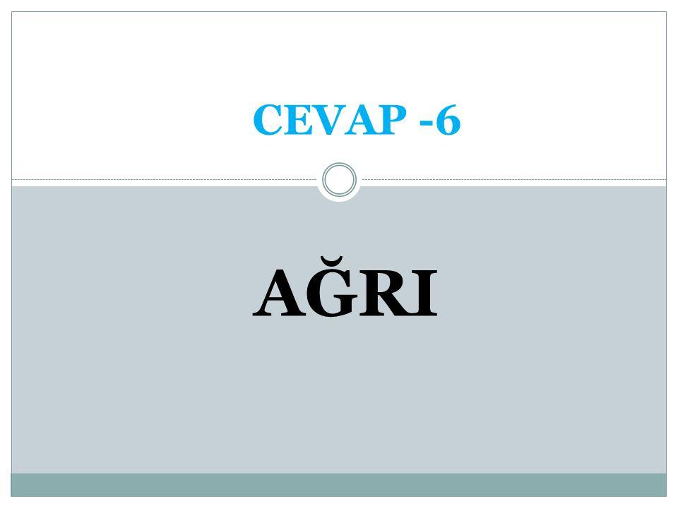 CEVAP -6 AĞRI