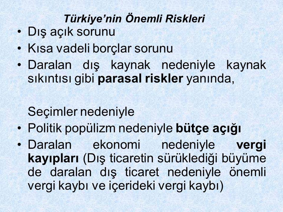 Türkiye'nin Önemli Riskleri