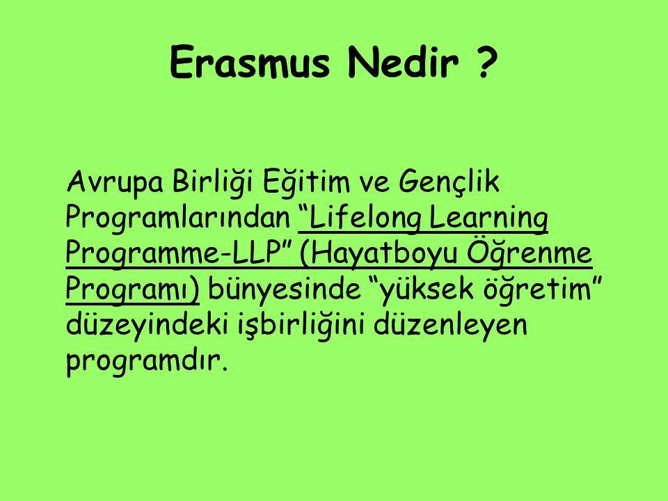 Erasmus Nedir