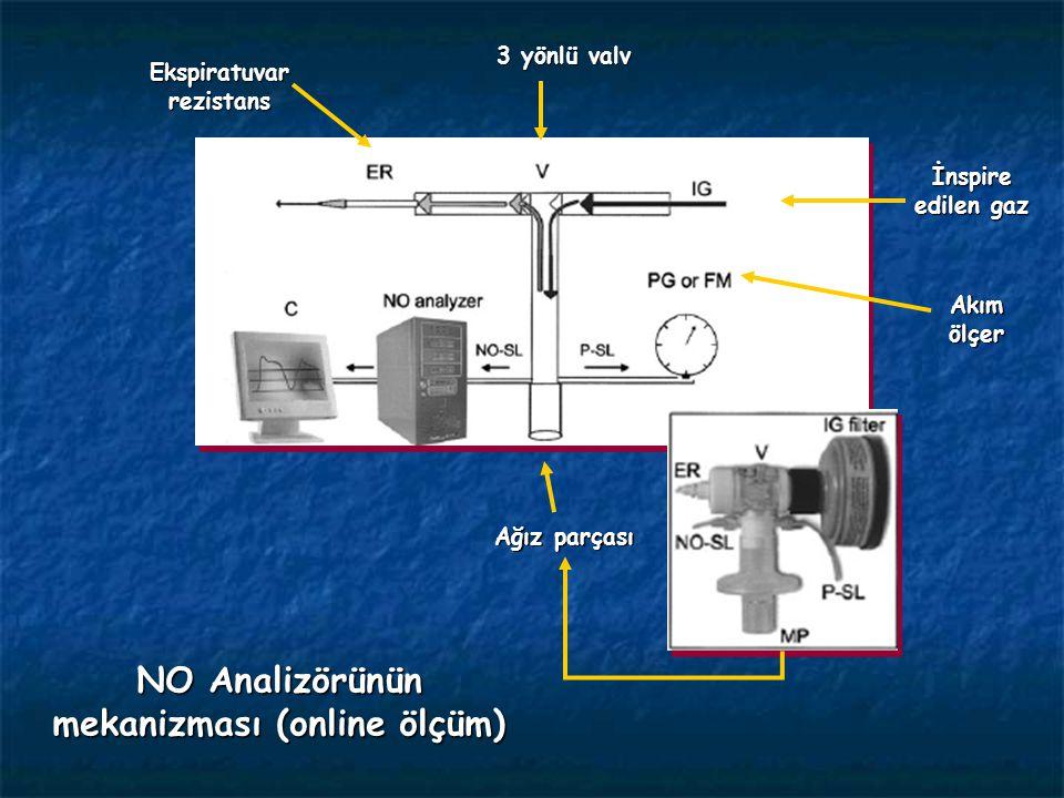 Ekspiratuvar rezistans NO Analizörünün mekanizması (online ölçüm)