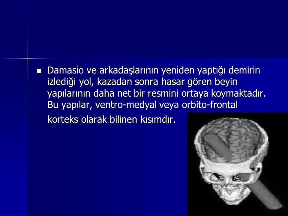 Damasio ve arkadaşlarının yeniden yaptığı demirin izlediği yol, kazadan sonra hasar gören beyin yapılarının daha net bir resmini ortaya koymaktadır.