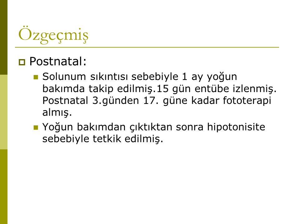 Özgeçmiş Postnatal: