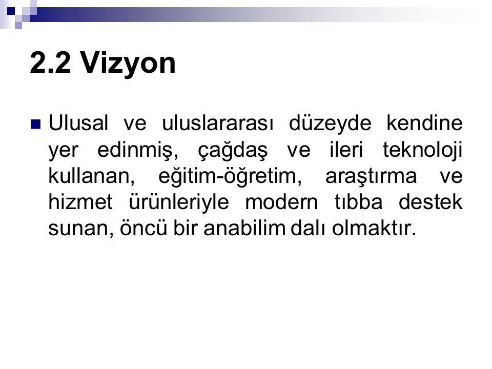 2.2 Vizyon