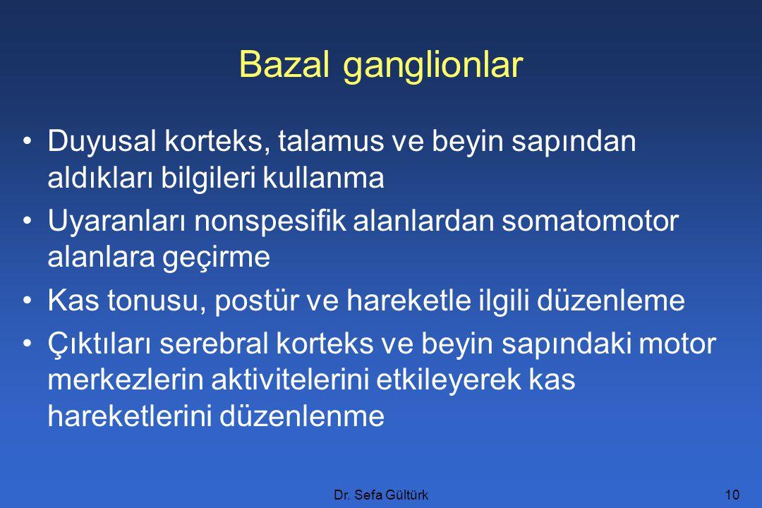 Bazal ganglionlar Duyusal korteks, talamus ve beyin sapından aldıkları bilgileri kullanma.
