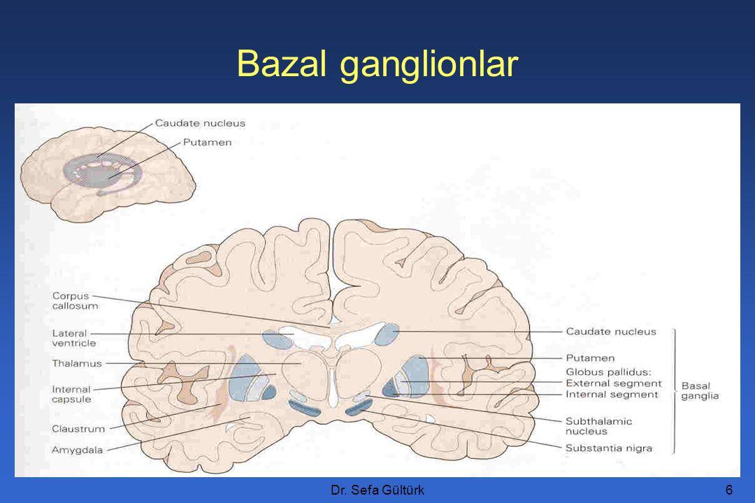 Bazal ganglionlar Dr. Sefa Gültürk