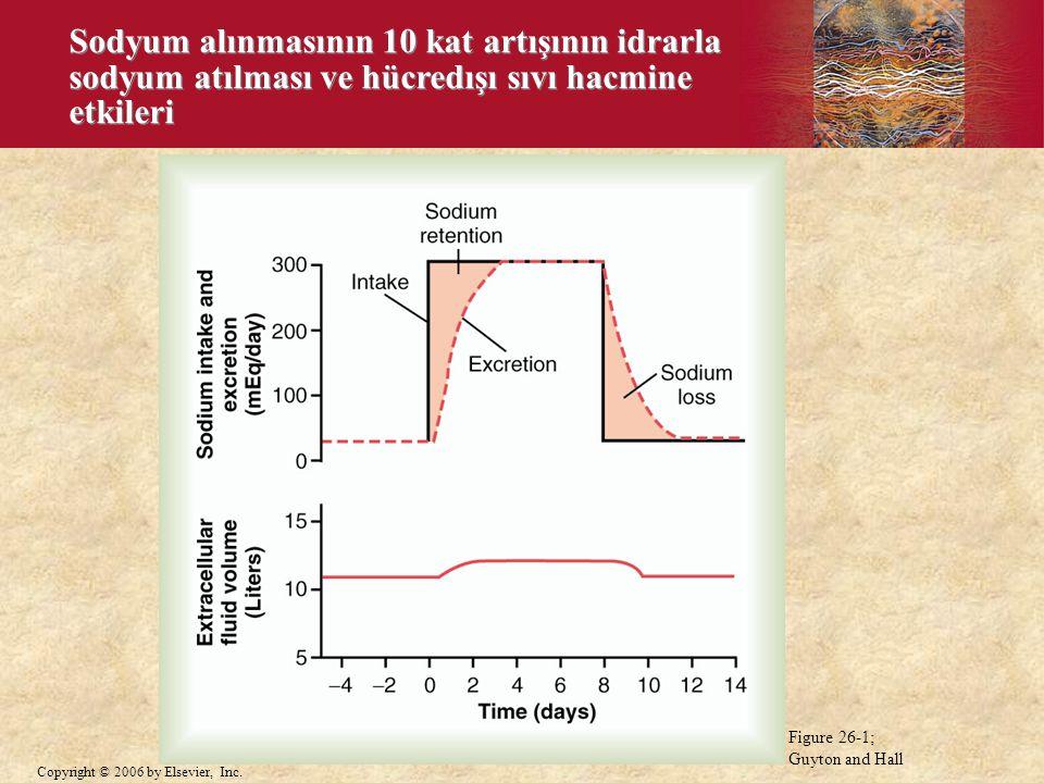 Sodyum alınmasının 10 kat artışının idrarla sodyum atılması ve hücredışı sıvı hacmine etkileri