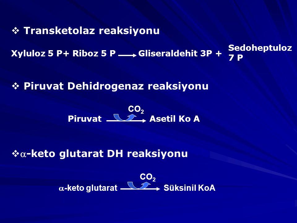 Transketolaz reaksiyonu