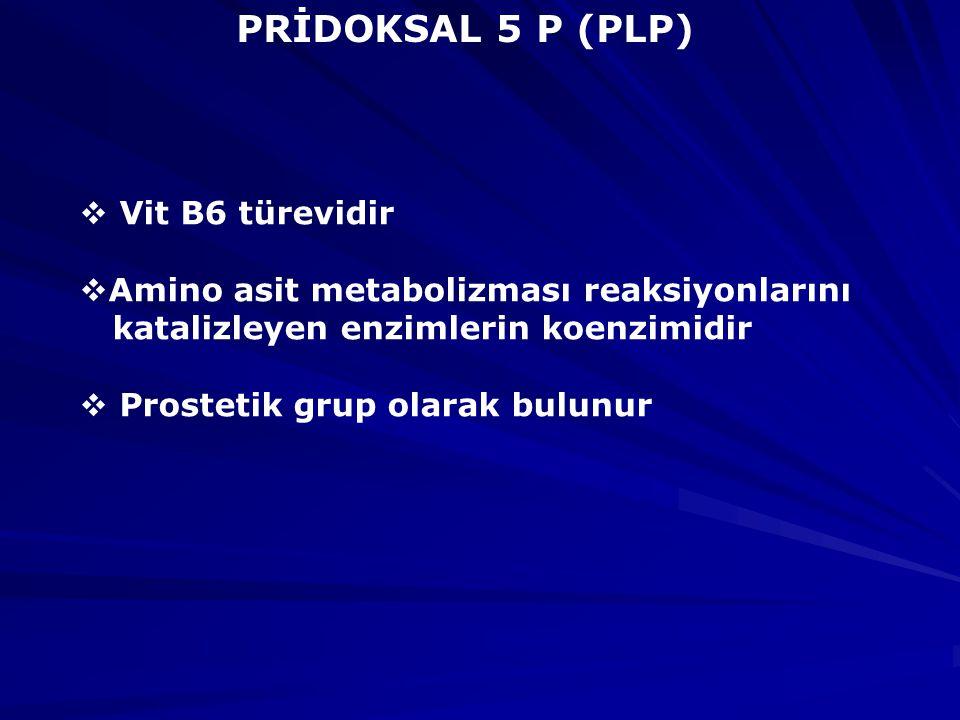 PRİDOKSAL 5 P (PLP) Vit B6 türevidir