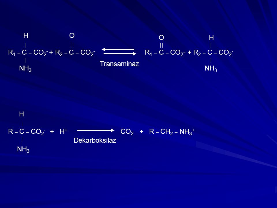 R1 _ C _ CO2- + R2 _ C _ CO2- R1 _ C _ CO2- + R2 _ C _ CO2-