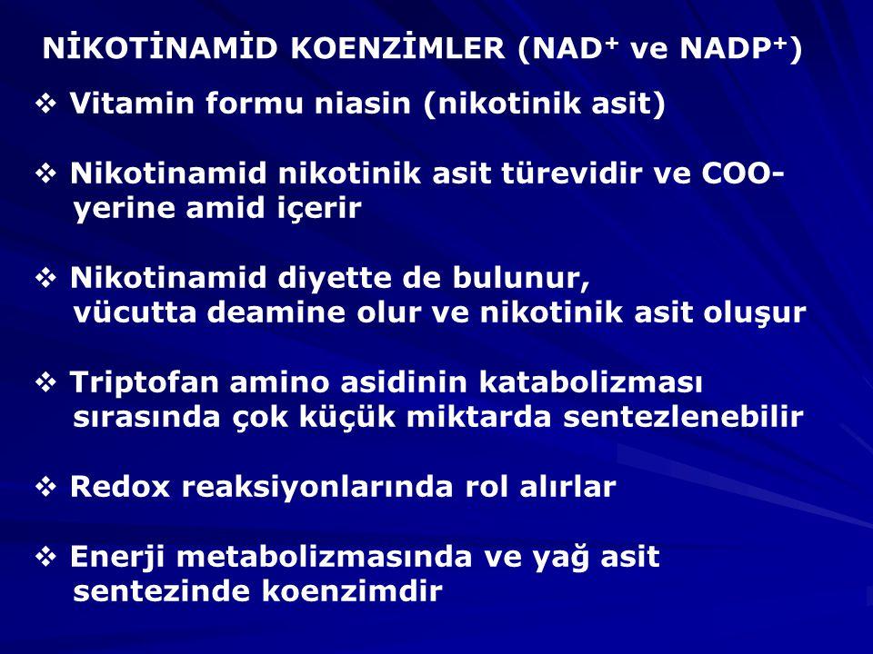 NİKOTİNAMİD KOENZİMLER (NAD+ ve NADP+)