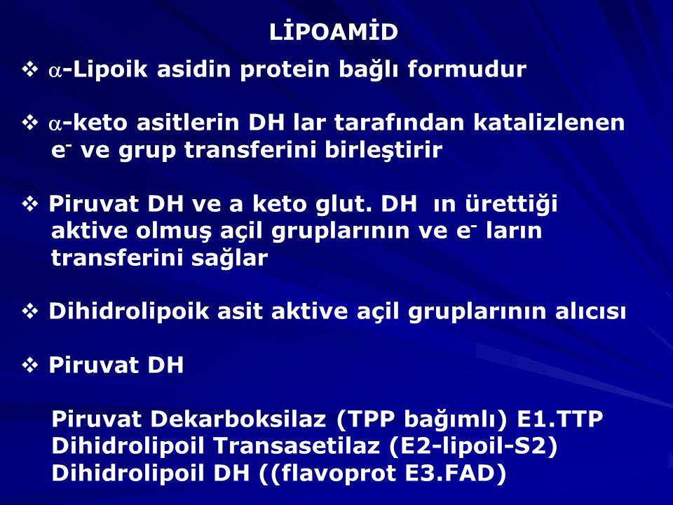 LİPOAMİD -Lipoik asidin protein bağlı formudur. -keto asitlerin DH lar tarafından katalizlenen. e- ve grup transferini birleştirir.