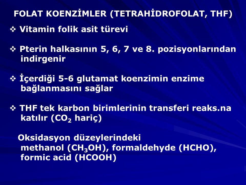 FOLAT KOENZİMLER (TETRAHİDROFOLAT, THF)
