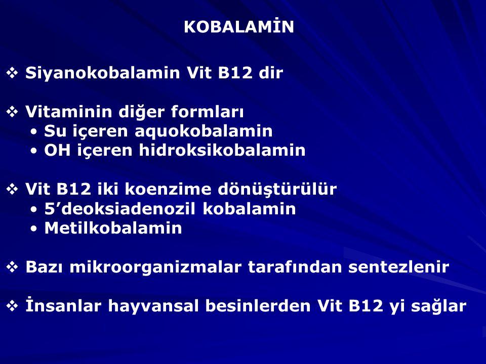 KOBALAMİN Siyanokobalamin Vit B12 dir. Vitaminin diğer formları. Su içeren aquokobalamin. OH içeren hidroksikobalamin.