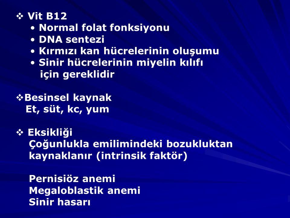 Vit B12 Normal folat fonksiyonu. DNA sentezi. Kırmızı kan hücrelerinin oluşumu. Sinir hücrelerinin miyelin kılıfı.