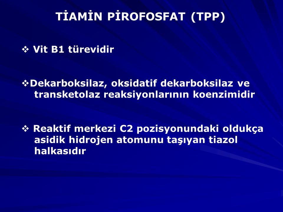 TİAMİN PİROFOSFAT (TPP)