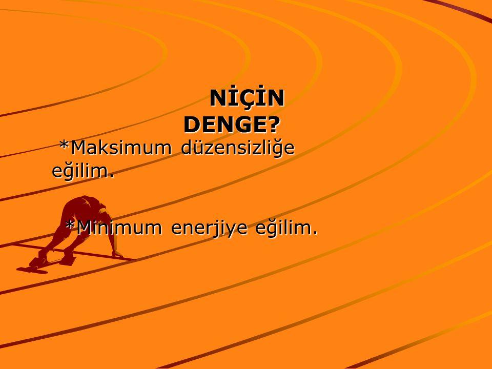 NİÇİN DENGE *Maksimum düzensizliğe eğilim. *Minimum enerjiye eğilim.