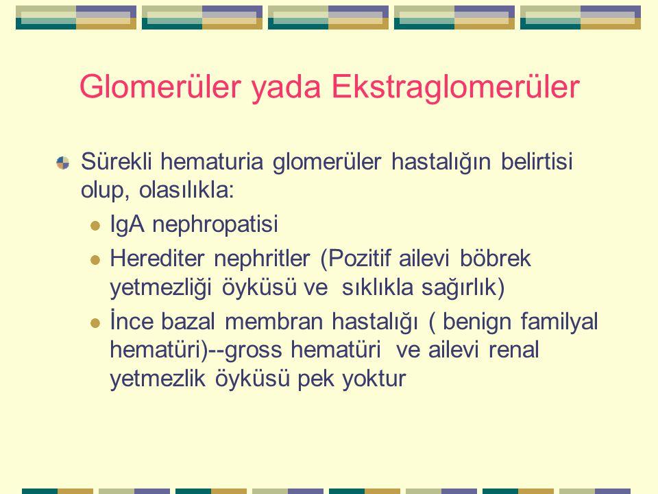 Glomerüler yada Ekstraglomerüler