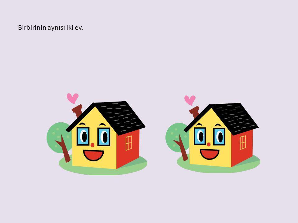 Birbirinin aynısı iki ev.