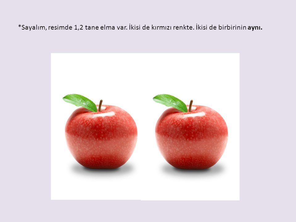 Sayalım, resimde 1,2 tane elma var. İkisi de kırmızı renkte