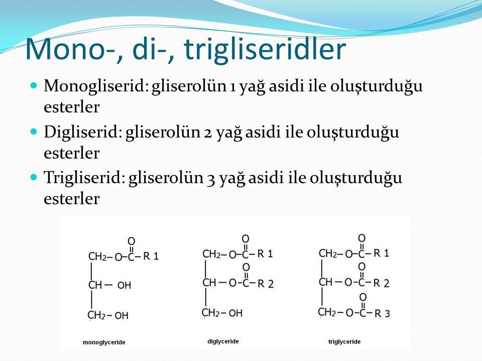 Mono-, di-, trigliseridler