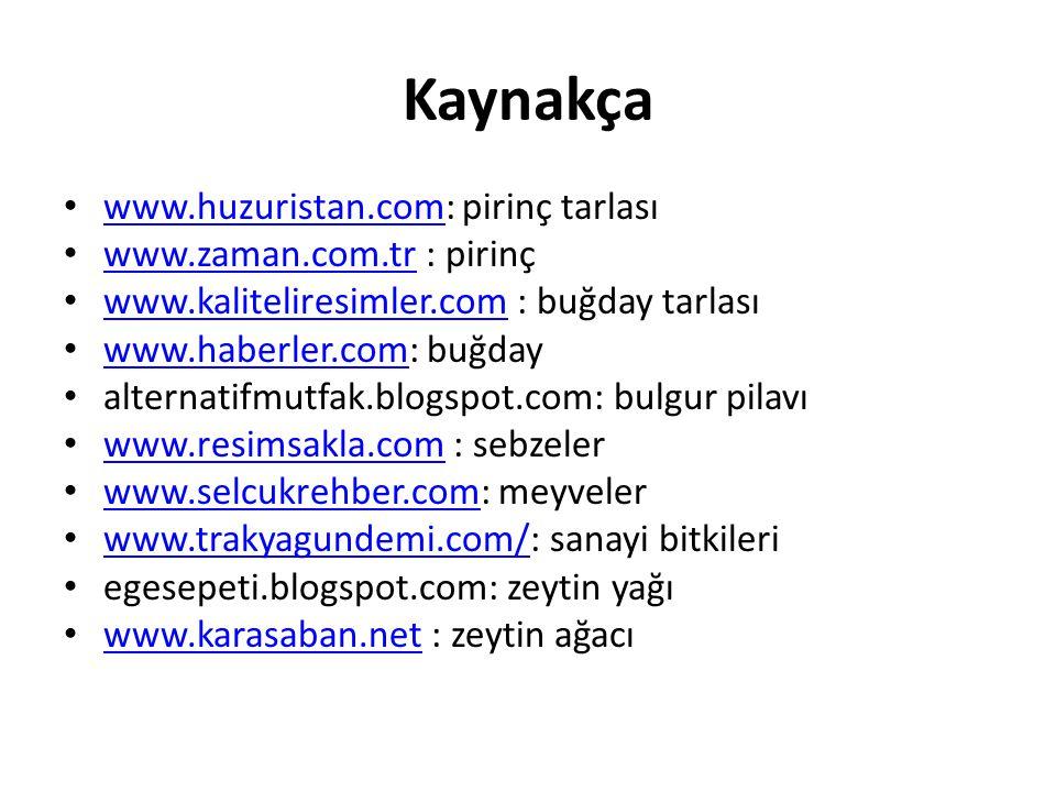 Kaynakça www.huzuristan.com: pirinç tarlası www.zaman.com.tr : pirinç