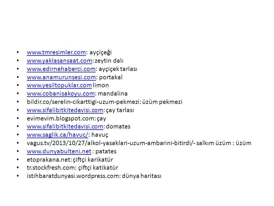 www.tmresimler.com: ayçiçeği