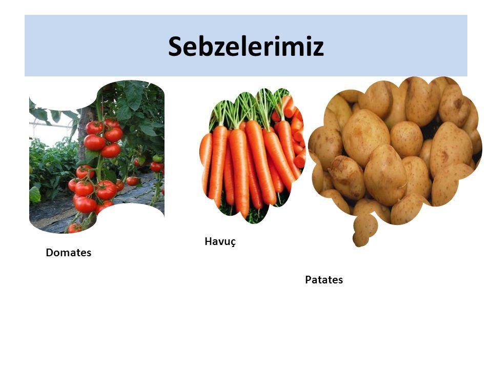Sebzelerimiz Havuç Domates Patates