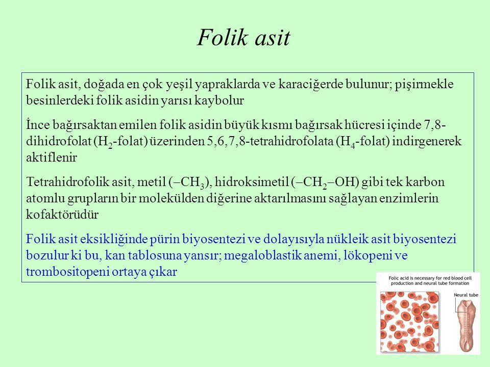 Folik asit Folik asit, doğada en çok yeşil yapraklarda ve karaciğerde bulunur; pişirmekle besinlerdeki folik asidin yarısı kaybolur.