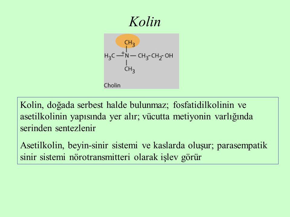 Kolin Kolin, doğada serbest halde bulunmaz; fosfatidilkolinin ve asetilkolinin yapısında yer alır; vücutta metiyonin varlığında serinden sentezlenir.