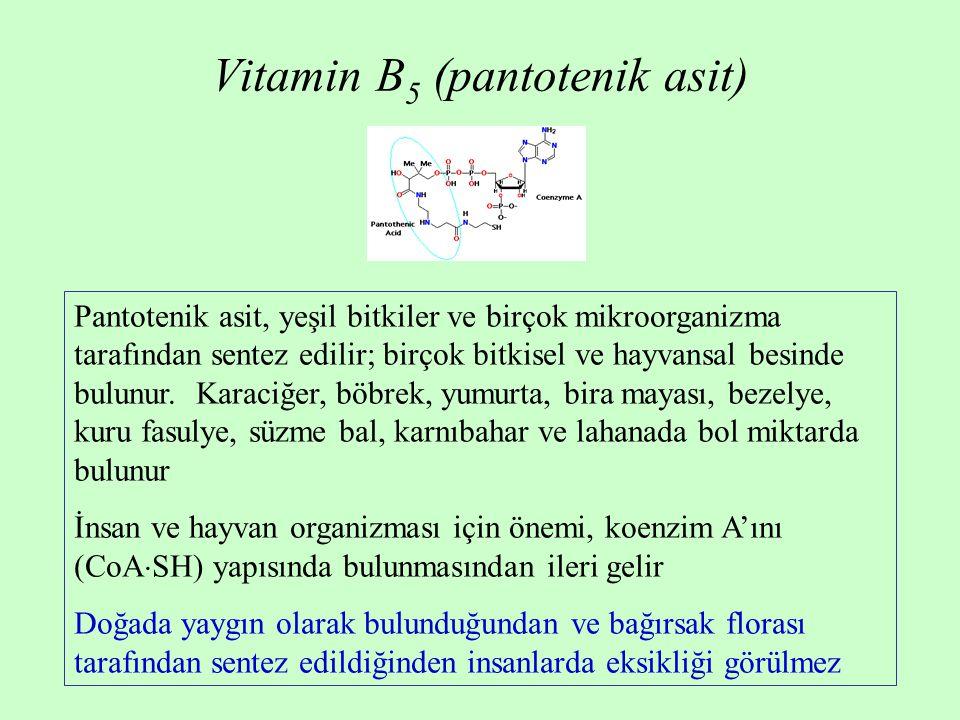 Vitamin B5 (pantotenik asit)