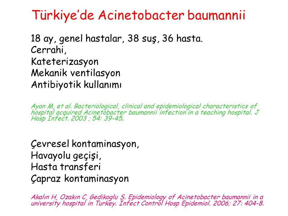 Türkiye'de Acinetobacter baumannii