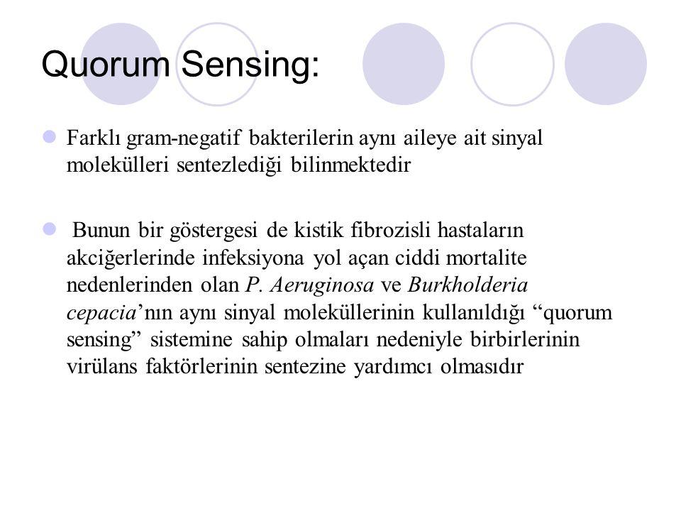 Quorum Sensing: Farklı gram-negatif bakterilerin aynı aileye ait sinyal molekülleri sentezlediği bilinmektedir.