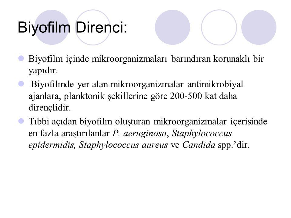 Biyofilm Direnci: Biyofilm içinde mikroorganizmaları barındıran korunaklı bir yapıdır.
