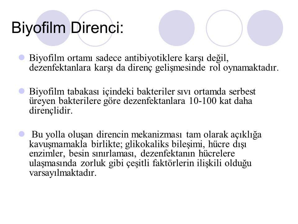 Biyofilm Direnci: Biyofilm ortamı sadece antibiyotiklere karşı değil, dezenfektanlara karşı da direnç gelişmesinde rol oynamaktadır.
